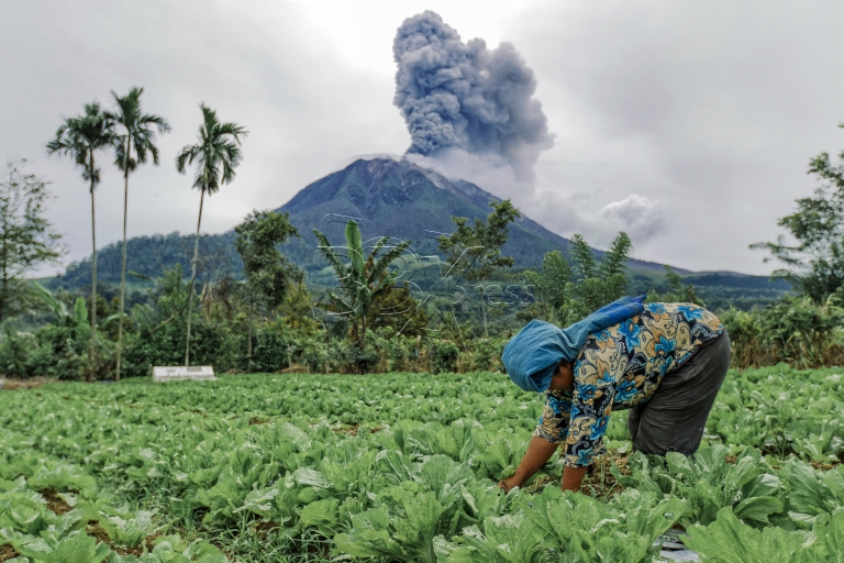 SINABUNG : A TESTAMENT OF SURVIVAL