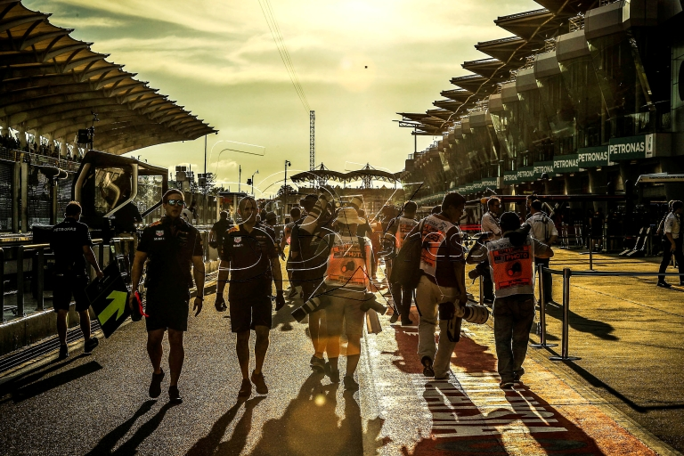 F1 2017 /